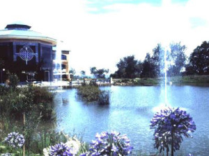 fountains007