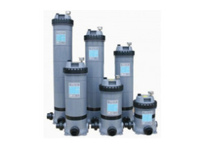 Cartridge Swimming Pool Filter